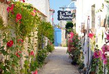 Les environs de Saint Georges de Didonne / La côte atlantique, ses plages, ses activités sur la côte atlantique... Découvrez Royan, Meschers-sur-Gironde en Charente Maritime