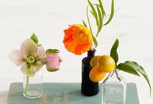 Plant / Flower Tree Pot