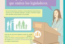 Infografías Políticas