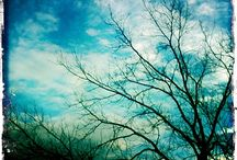SkY / by Maille EnLair