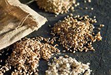 La Stecciaia / Immerso nel paesaggio mozzafiato delle Crete Senesi, il birrificio agricolo bio La Stecciaia produce le proprie birre artigianali rispettando il territorio e la natura, con il suo approccio biologico alla produzione.