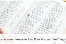 bible study / by Savannah Vick-O'Neal