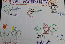 Classroom Anchor Charts / by Bridget Byers