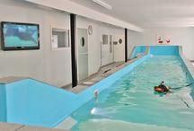 Dogs swimming in Dogswim.dk / Hundesvømning når det er bedst! Dogs swim