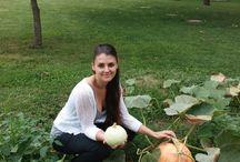 Fall Harvest / Fall decorations!