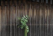 Verde / Lo spettacolo della natura
