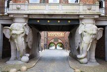 bijzondere poorten