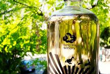Cider / Everything artisan cider!