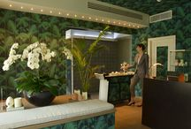Augustus Day Spa