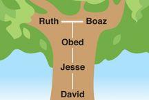bible study Ruth