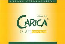 カリカセラピ / カリカセラピSAIDO-PS501は、単一成分の抽出や特定の成分を加えて商品化されたものではなく、野生の未熟果の青パパイアを丸ごと使って発酵・熟成した発酵食品です。自然の働きにまかせ発酵・熟成させることで、さまざまな有用成分が生まれ、その成分が自己本来のバランスを整え健康へと導いていきます。