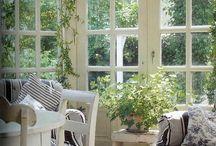 Winter garden/Sunroom
