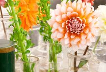 floral / by Lau Far