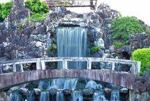 Okinawa / by Brionna Ellwood