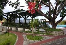 Tropea  / Il Villaggio l'Olivara si presenta come un ampio balcone panoramico sovrastante Tropea da cui dista solo 900 metri, si trova in una stupenda posizione panoramica dominante Tropea, il golfo di Santa Eufemia e le Isole Eolie. E'dotato di ampi spazi, vialetti con ampie soste, giardini curatissimi, grande varietà di piante, fiori di ogni tipo. / by Televacanze Online