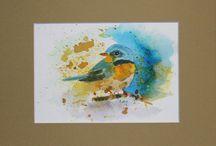 Water colour / Bird