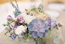 B: Flores