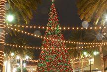 Christmas Trees / All Kinds OF Beautiful Christmas Trees!  #Christmastrees