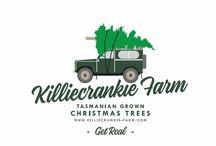 Killiecrankie farm christmas trees