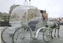 Wedding Transportation Ideas / There are so many unique ways to arrive at your wedding.  For more creative wedding transportation ideas, go to www.unique-reception-theme-wedding-ideas.com