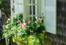 bloembak onder raam