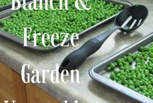 blanch/freeze vegetables