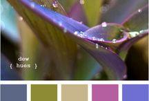 Colors fuel the soul