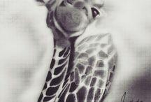스케치 sketch - 동물 animal