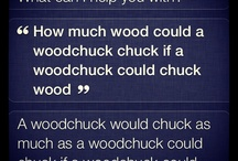 Convos with Siri