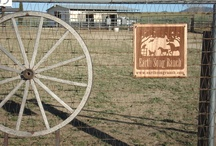 Earth Song Ranch Products / Our products are all natural and freshly made, many with herbs, probiotics, and more - we have natural healing salves, fly spray, and lots of wonderful articles to share!