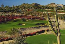 Palmilla Golf Club / Palmilla Golf Club, located in San Jose del Cabo, Mexico, has been rated as one of the top 100 in the world by Great Golf Resorts of the World.