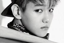 EXO / K-Pop band EXO. Members/Üyeler; EXO-K: Suho , Kai , Baekhyun , Chanyeol , D.O , Sehun , EXO-M: Kris(-) , Luhan , Chen , Xiumin , Lay , Tao.