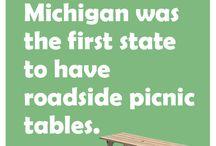 all things Michigan