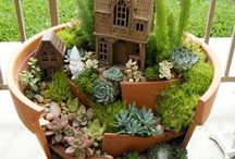 Fairy Gardens & Such / Beautiful and tiny.  Why, if I was a fairy I'd move right in.   / by Carole White