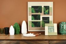 Tropical Home Accessories