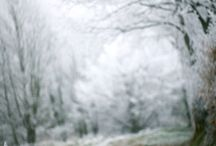 Winter / by Amber The Lost Faery