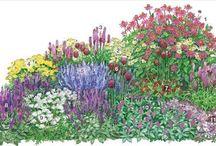 Garten - Bepflanzungspläne