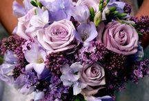 fiolet ślub