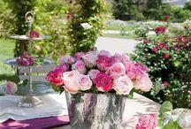 Flowers / by Chelsea Briones