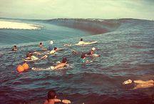 Surf Pics