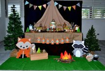 Boys Indoor Camping Party.