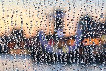 SEASONS OF LIFE / Photo impressionist images