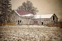 Winter / by Vicky Warren