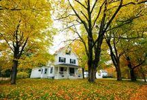New Jersey's Fall Foliage