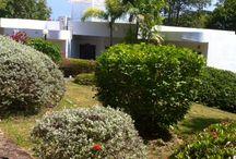 www.rayong.fi  vuokraa villa Thaimaasta / VILLA/RAYONG