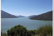 New Zealand / Home Sweet Home / by Shelley Munro: Author