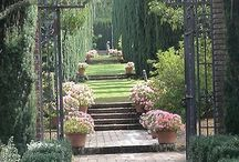 Garden: Path