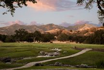 extraordinary: Santa Ynez / by The ART of LIVING by Sotheby's International Realty