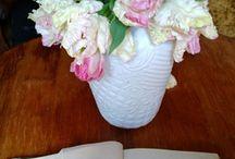 Тюльпаны. Tulip /  О тюльпанах