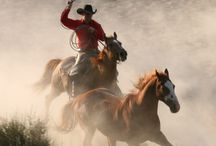 It's A Cowboy's Life / Cowboys are very popular as romance novel heroes. I use this board to collect images of cowboys and images that might depict the cowboys life.